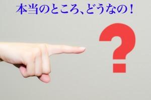 DINGO E 評判 評価 口コミ レビュー 画像