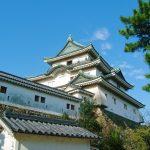 【ポケモンGO】和歌山県でカビゴンが出現する場所はここ!
