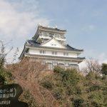 【ポケモンGO】岐阜県でラプラスが出現する場所はここだ!